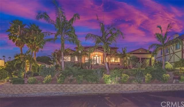 4461 Ohio Street, Yorba Linda, CA 92886 (#PW19217778) :: Allison James Estates and Homes