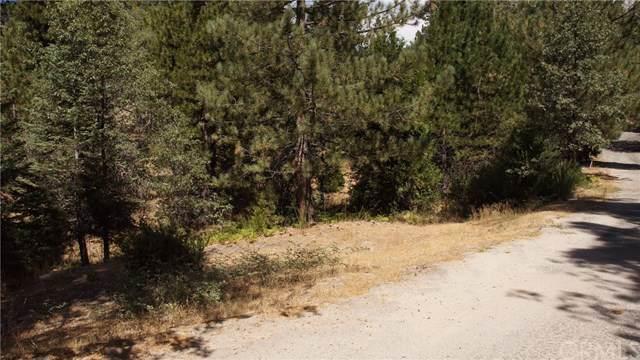 11 Cape Horn, Running Springs, CA 92382 (#EV19219463) :: The Miller Group