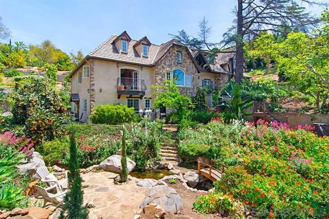 4616 Conrad Drive, La Mesa, CA 91941 (#190051024) :: Steele Canyon Realty