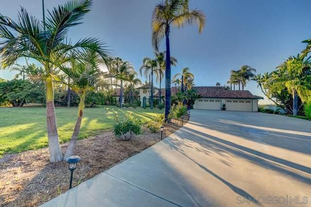 30345 Via Maria Elena, Bonsall, CA 92003 (#190051042) :: Z Team OC Real Estate