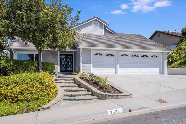 2823 Calle Guadalajara, San Clemente, CA 92673 (#OC19219075) :: Allison James Estates and Homes