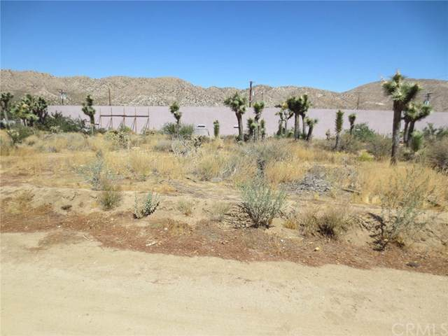 1 Homestead Way, Yucca Valley, CA  (#JT19220088) :: Allison James Estates and Homes