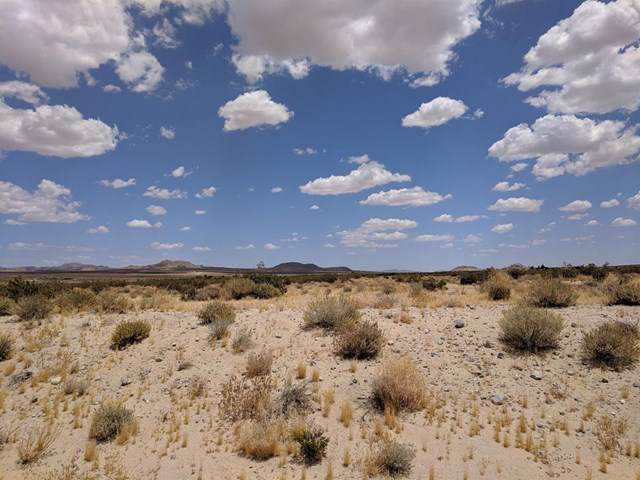 0 Peffer Road, Lucerne Valley, CA 92356 (#517714) :: Steele Canyon Realty