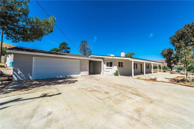 31735 1st Street, Acton, CA 93510 (#SR19220185) :: Fred Sed Group