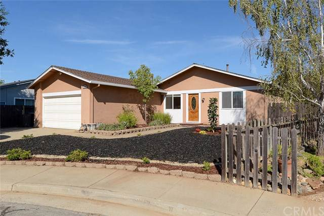 1565 Leafy Court, Morgan Hill, CA 95037 (#NS19218783) :: Berkshire Hathaway Home Services California Properties