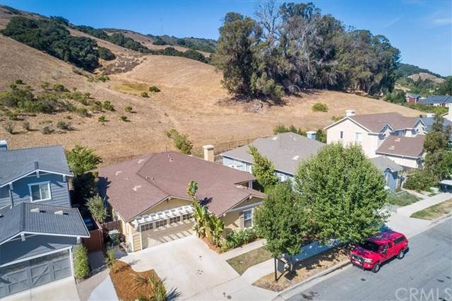 1741 Devaul Ranch Drive, San Luis Obispo, CA 93405 (#SP19160520) :: Steele Canyon Realty