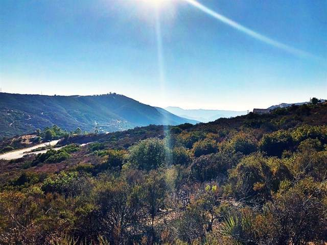 2005 Corte Asoleado Lot #4, Alpine, CA 91901 (#190051281) :: Millman Team