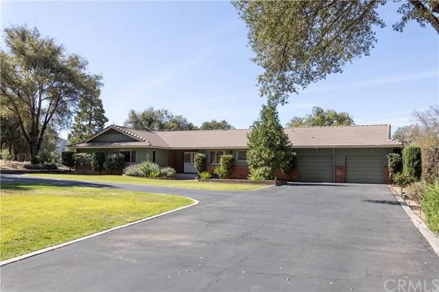 5565 Parker Drive, Mariposa, CA 95338 (#MP19219817) :: Allison James Estates and Homes