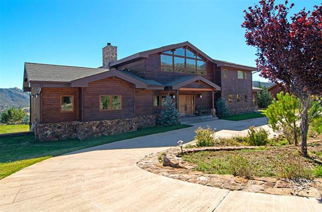 15904 Cuyamaca Forest Rd., Julian, CA 92036 (#190051343) :: RE/MAX Empire Properties