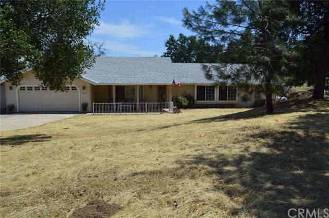 30065 Tioga Drive, Coarsegold, CA 93614 (#FR19221175) :: Allison James Estates and Homes