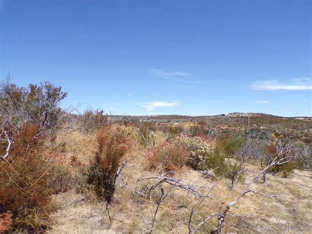 0 Old Highway 80, Pine Valley, CA 91962 (#190051395) :: J1 Realty Group