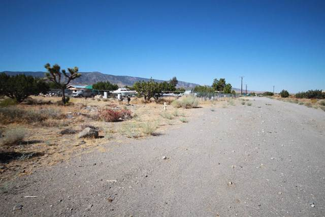 2625 Cholla Road, Phelan, CA 92371 (#517778) :: Abola Real Estate Group