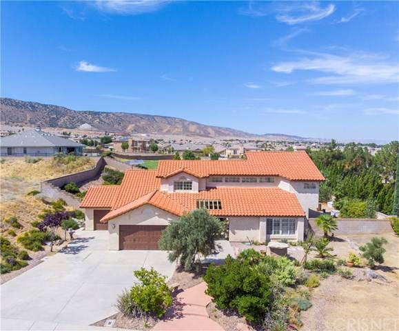 41717 Cielo Vista Drive, Palmdale, CA 93551 (#SR19220787) :: RE/MAX Estate Properties
