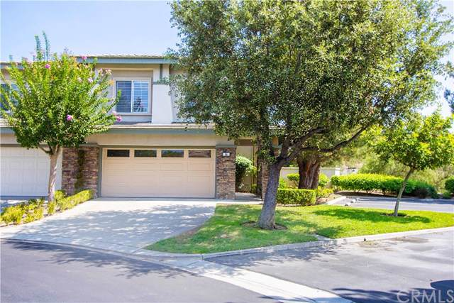 64 Brassie Lane, Coto De Caza, CA 92679 (#OC19221903) :: Z Team OC Real Estate