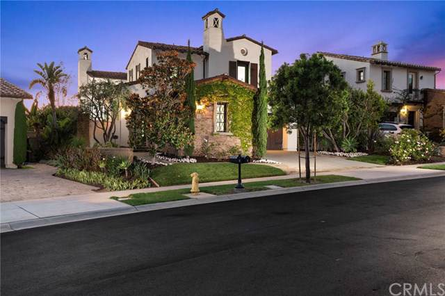 6 Canyon Peak, Newport Coast, CA 92657 (#OC19222110) :: Allison James Estates and Homes