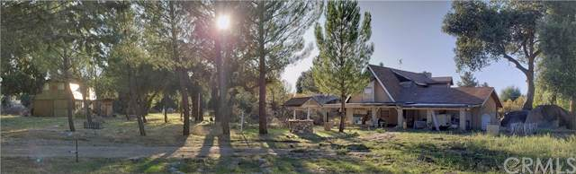 29975 Chihuahua Valley Road, Warner Springs, CA 92086 (#ND19222611) :: Crudo & Associates