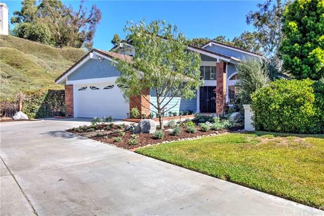 24985 Danafir, Dana Point, CA 92629 (#OC19222390) :: Doherty Real Estate Group