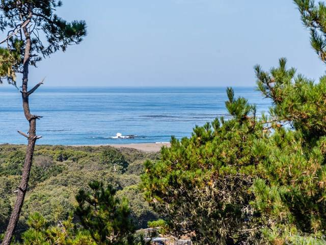 850 Suffolk Street, Cambria, CA 93428 (#SC19219798) :: RE/MAX Parkside Real Estate