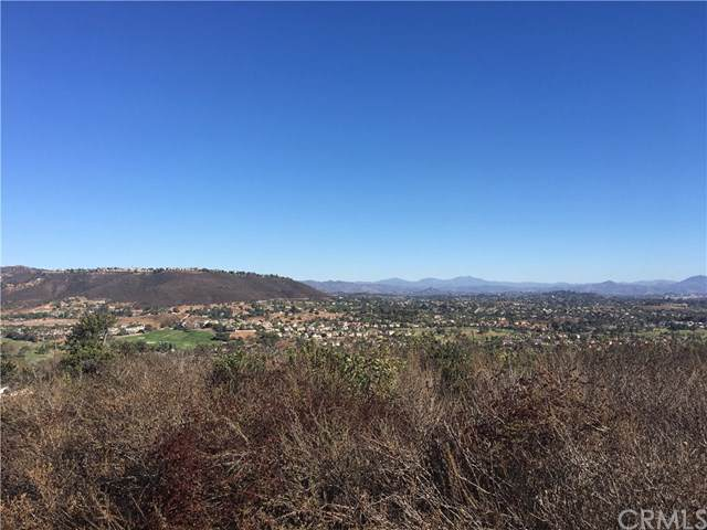 0 Twin Oaks Valley Road, San Marcos, CA 92069 (#SW19223133) :: Compass California Inc.