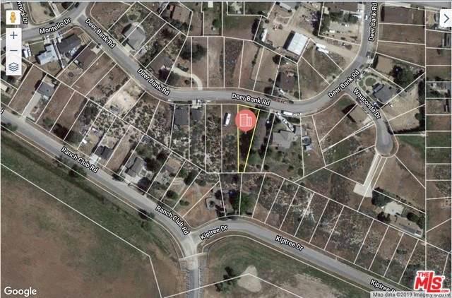 0 Vac Deerbank Drive Vic Kiptree Dr. Drive, Lake Elizabeth, CA 93532 (#19507744) :: J1 Realty Group