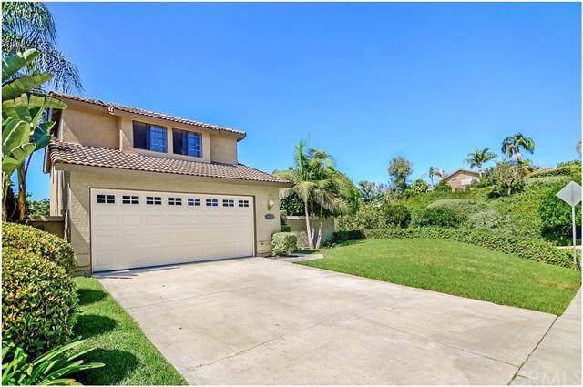 28831 Niguel Vista, Laguna Niguel, CA 92677 (#OC19220827) :: Allison James Estates and Homes
