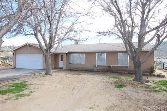 40003 167th Street E, Palmdale, CA 93591 (#SR19223710) :: eXp Realty of California Inc.