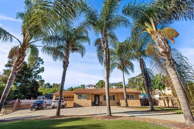 9792 Austin, Spring Valley, CA 91977 (#190051898) :: Z Team OC Real Estate