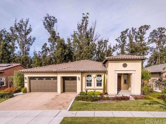 1542 Trail View Place, Nipomo, CA 93444 (#PI19224033) :: Allison James Estates and Homes