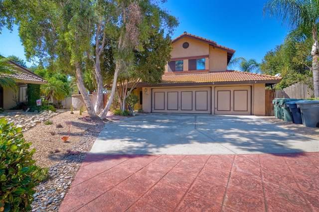 1040 Amethyst Way, Escondido, CA 92029 (#190052094) :: California Realty Experts