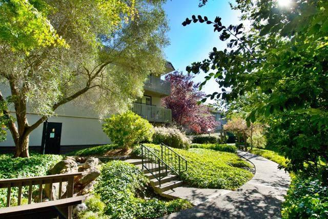 7159 Shelter Creek Lane, San Bruno, CA 94066 (#ML81769343) :: California Realty Experts