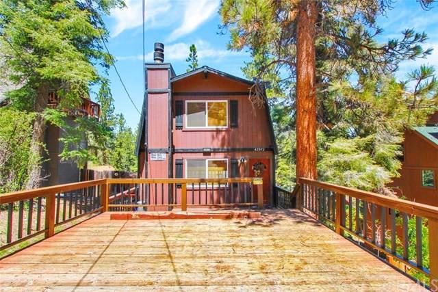 42972 Falls Avenue, Big Bear, CA 92315 (#OC19224825) :: Allison James Estates and Homes