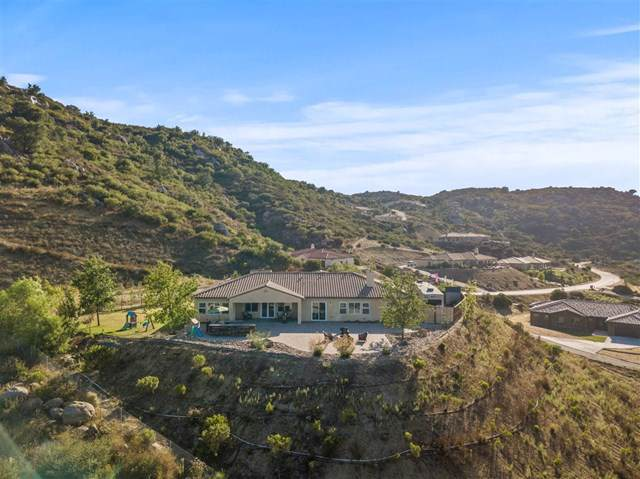 12884 Vineyard Crest Pl, Lakeside, CA 92040 (#190052241) :: RE/MAX Innovations -The Wilson Group