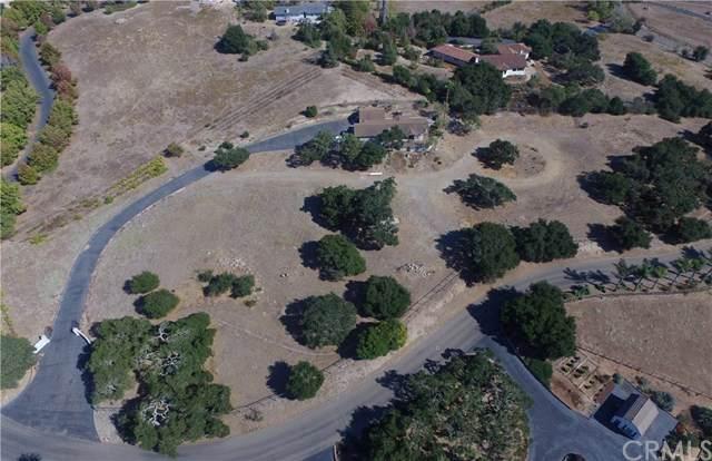 438 Rim Rock Road, Nipomo, CA 93444 (#PI19141982) :: Allison James Estates and Homes