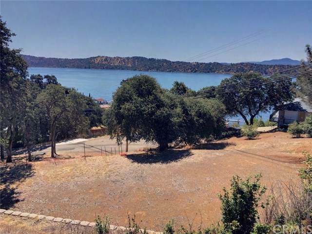 10417 Terrace Drive, Clearlake Oaks, CA 95423 (#LC19223988) :: Heller The Home Seller