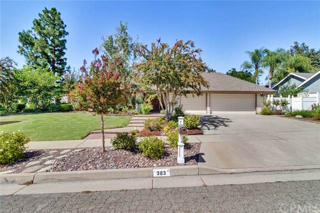 383 Cynthia Crest, Redlands, CA 92373 (#IV19224820) :: A G Amaya Group Real Estate