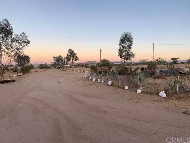1032 Cambria Avenue, Landers, CA 92285 (#CV19224971) :: Steele Canyon Realty