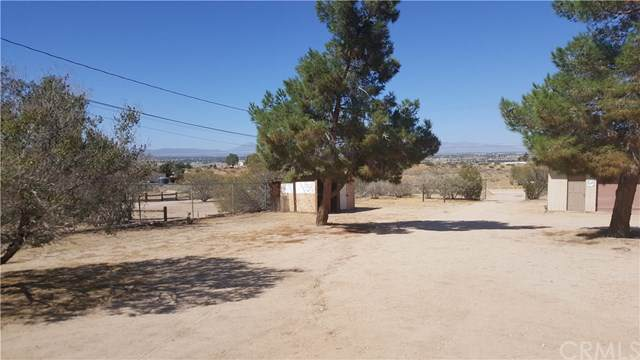 10377 Mockingbird Avenue, Apple Valley, CA 92308 (#CV19225372) :: RE/MAX Empire Properties