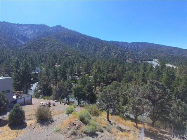 5500 Easter Drive, Wrightwood, CA 92397 (#CV19225413) :: Fred Sed Group