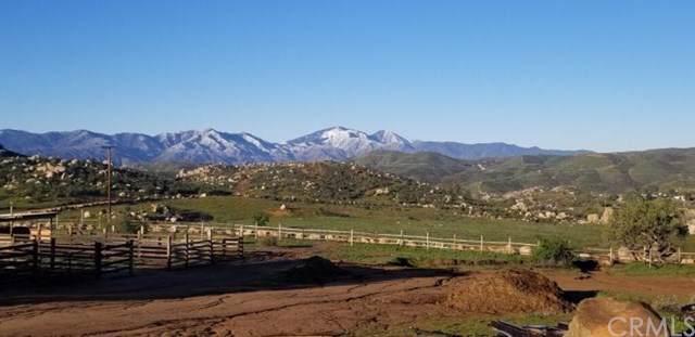 24540 El Baquero Road, Perris, CA 92570 (#IV19217192) :: Cal American Realty