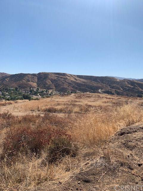 30225 Bouquet Canyon Road, Saugus, CA  (#SR19225693) :: RE/MAX Masters