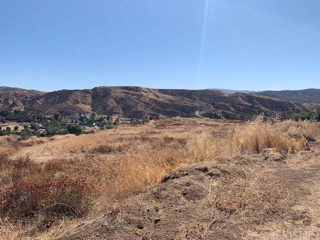 0 Bouquet Canyon, Saugus, CA  (#SR19225710) :: RE/MAX Masters
