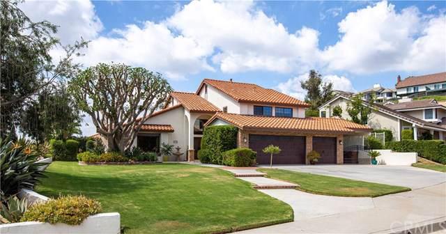 20711 Vista Del Norte, Yorba Linda, CA 92886 (#PW19223613) :: The Miller Group