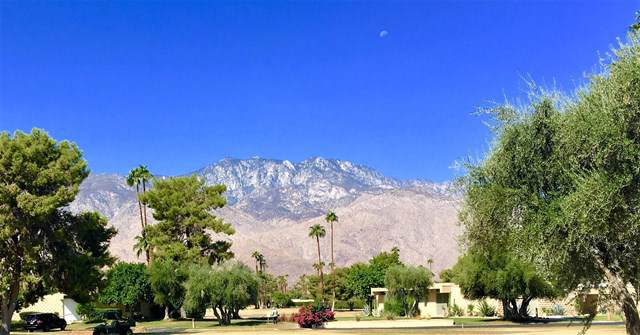 282 Desert Lakes Drive, Palm Springs, CA 92264 (#219030494PS) :: Realty ONE Group Empire