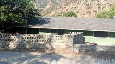602 Scott Lane, Lytle Creek, CA 92358 (#IV19227409) :: Rogers Realty Group/Berkshire Hathaway HomeServices California Properties