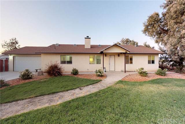 9847 E Avenue S8, Littlerock, CA 93543 (#SR19228638) :: Z Team OC Real Estate