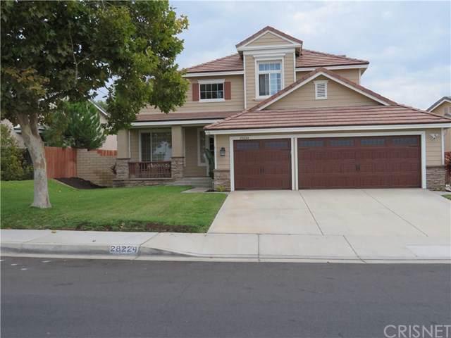 28224 Ridge View Drive, Canyon Country, CA 91387 (#SR19229349) :: J1 Realty Group