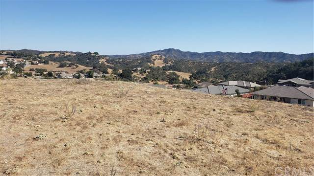 136 Glenbrook Drive, Paso Robles, CA 93446 (#NS19230959) :: The Houston Team   Compass