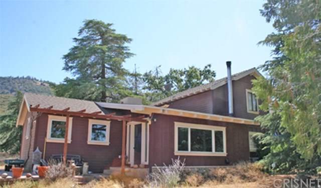 46821 Naomi Road, Lake Hughes, CA 93532 (#SR19223141) :: The Parsons Team