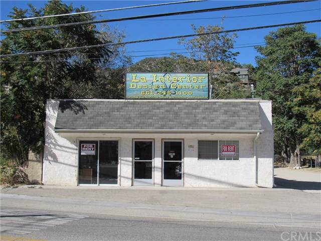 3501 Mt Pinos Way, Frazier Park, CA 93225 (#CV19230882) :: Z Team OC Real Estate