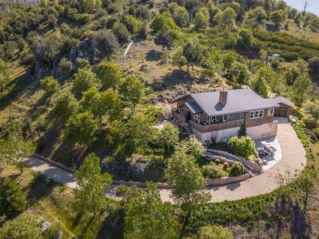 35241 Iron Springs Way, Julian, CA 92036 (#190053739) :: Z Team OC Real Estate